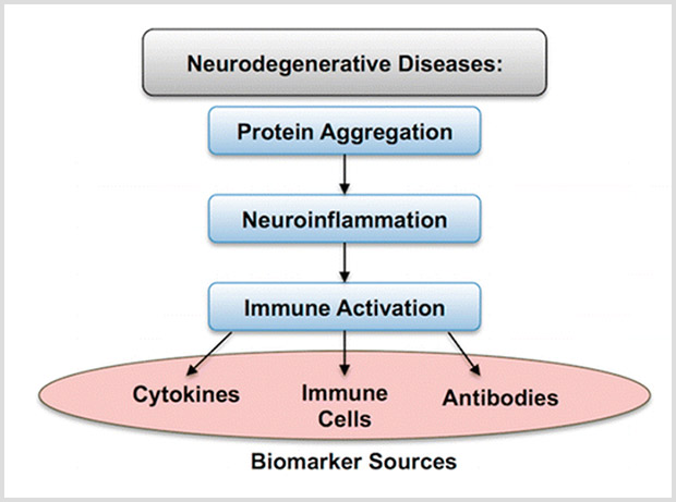 The Great Connection: Immune system activation + neuroinflammation = neurodegenerative diseases