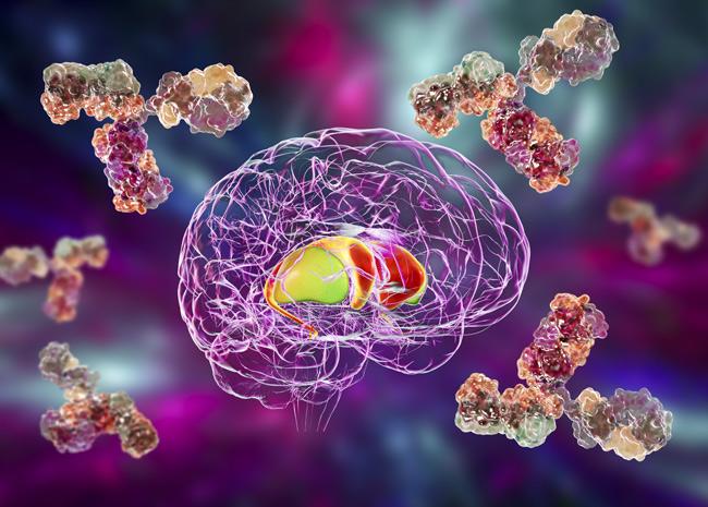 Autoantibody testing for neuropsychiatric symptoms