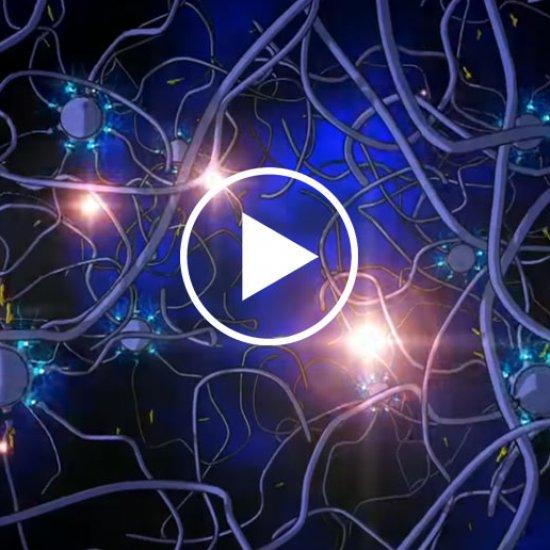 Autoimmune Neuropsychiatric Disorders: PANS/PANDAS